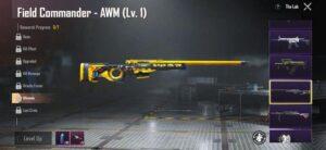 معرفی بهترین اسکین سلاح های AR